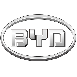 BYD<br> (БИД)
