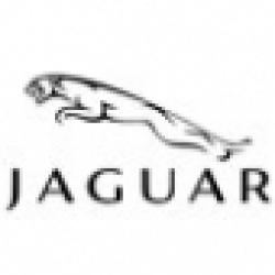 Стекло для JAGUAR (Ягуар)