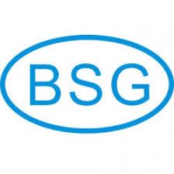Стекло BSG